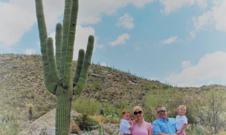Tips for Visiting Saguaro National Park