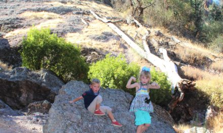 Pinnacles National Park- A Park with Surprises