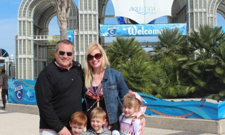 My Tips for Visiting Sea World