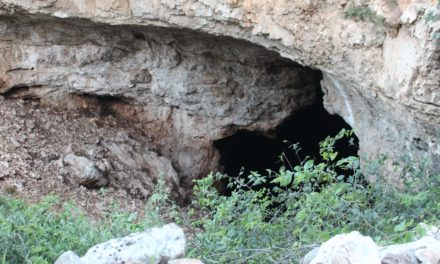 Hill Country Must See- The Eckert James River Bat Cave Preserve