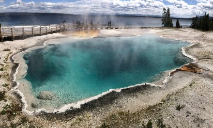 Yellowstone National Park 2019