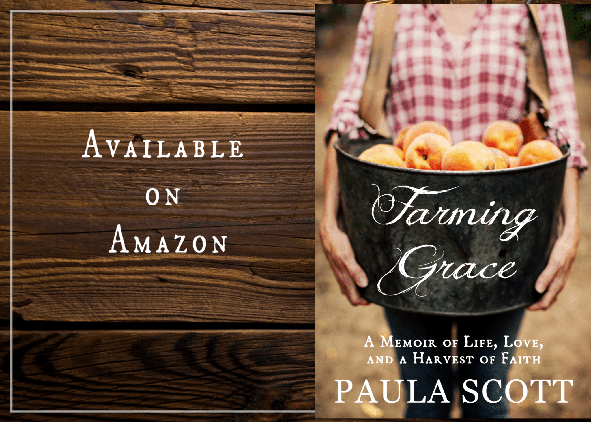 Farming Grace: A Book by My Friend Paula Scott Coming Soon!